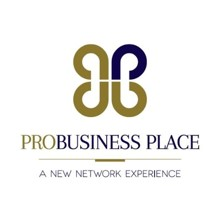 Pro Business Place